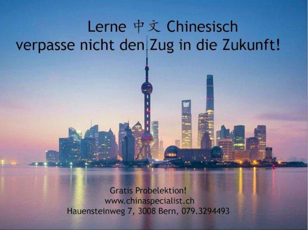 Chinesisch Unterricht (virtuelle Gratis Probelektion)