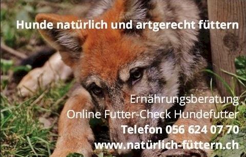 Hundefutter Test Schweiz - Hundefutter testen - Futter-Check Hund