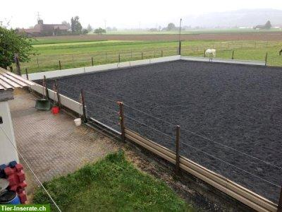 grosse Pferdeboxe zu vermieten in Thierachern BE