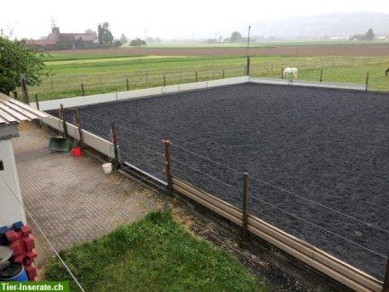 grosse Pferdeboxe zu vermieten in Thierachern BE - Gratisinserat.ch