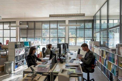 Helles Büro in Bürogemeinschaft in der Matte in Bern