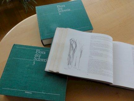 Flora der Schweiz (Hess/Landolt/Hirzel, 1976 ff.) - Gratisinserat.ch
