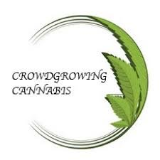 Crowdgrowing Cannabis - Gratisinserat.ch