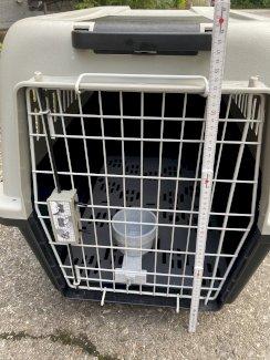 Hundetransportbox - Gratisinserat.ch