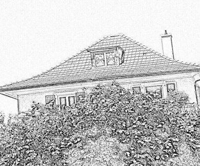 Zu verkaufen: Charmantes, freistehendes Vorstadthaus aus den 20er-Jahren mit Garten, an der Stadtgrenze Trimbach / Olten.  - Gratisinserat.ch