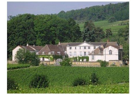 Landgut / Herrenhaus mitten in den Weinhängen Burgunds - Gratisinserat.ch